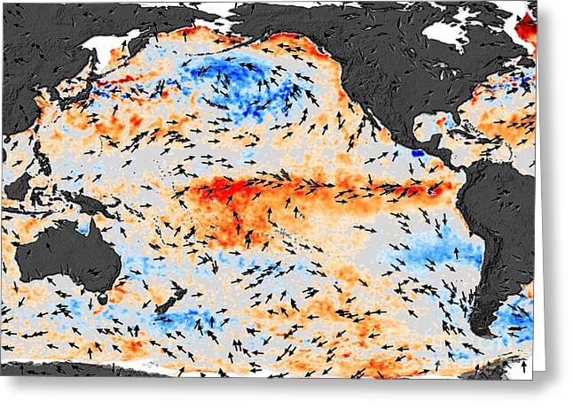 Anomalies Greeting Cards - El Nino Sea Temperatures And Winds Greeting Card by NASA / Science Source