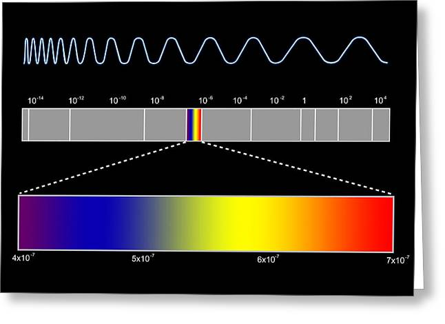 Electromagnetic Spectrum Greeting Card by Seymour