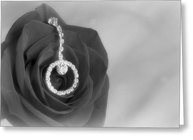 Elegance In Black And White Greeting Card by Mark J Seefeldt