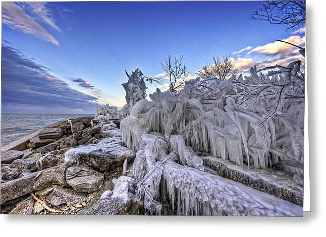 Lake Ontario Greeting Cards - Elements of the shoreline Greeting Card by Everet Regal
