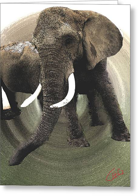 Hera Pastels Greeting Cards - Elephant Awake Greeting Card by Colette V Hera  Guggenheim