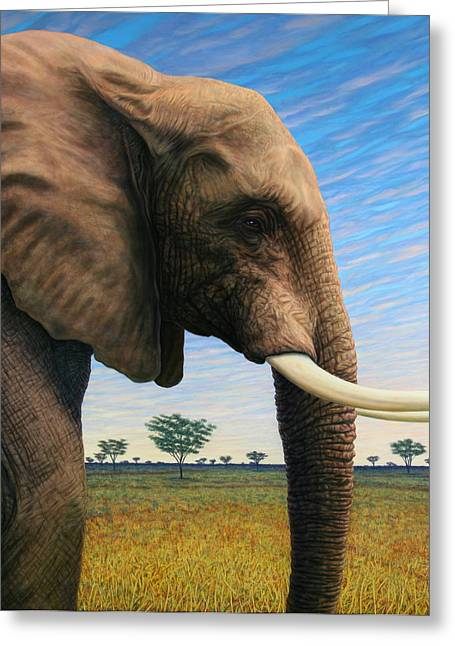 James Paintings Greeting Cards - Elephant on Safari Greeting Card by James W Johnson