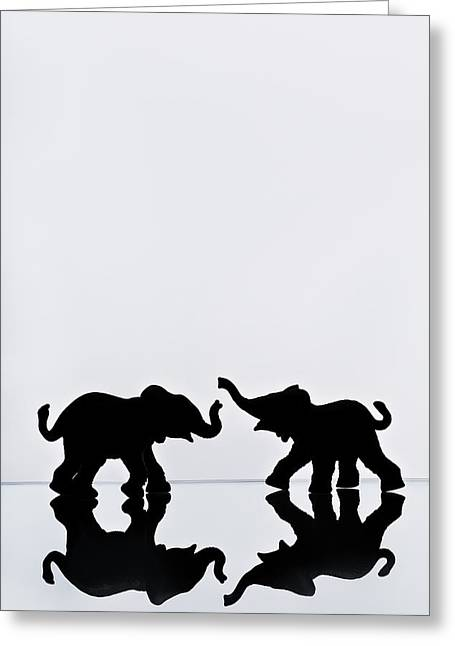 Elephant Pair Reflection Greeting Card by Chris Knorr
