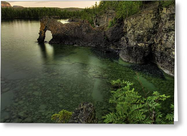 Sea Lions Greeting Cards - Elephant rests in the green lagoon   Greeting Card by Jakub Sisak