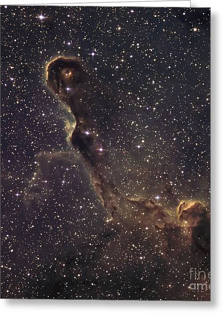 Twinkle Greeting Cards - Elephant Trunk Nebula Greeting Card by Don Goldman