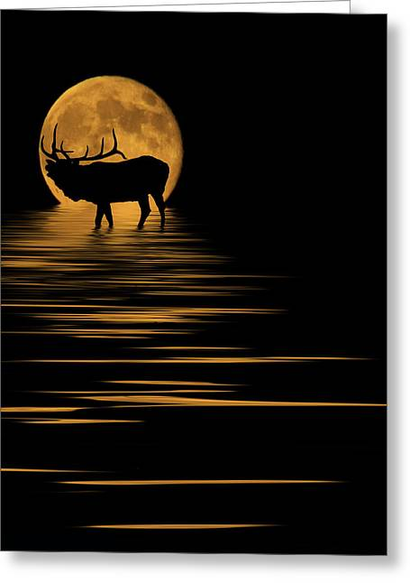 Full Moon Mixed Media Greeting Cards - Elk In The Moonlight Greeting Card by Shane Bechler