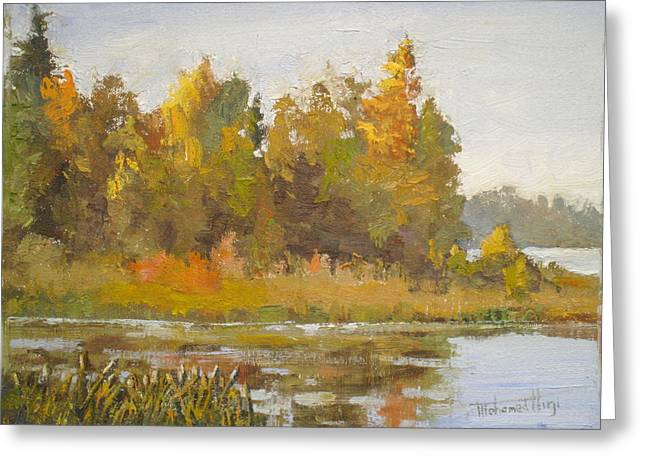 Alberta Water Falls Greeting Cards - Elk Island 5 Greeting Card by Mohamed Hirji