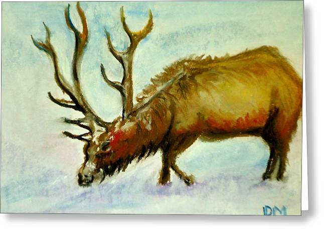 Canada Pastels Greeting Cards - Elk Greeting Card by Pete Maier