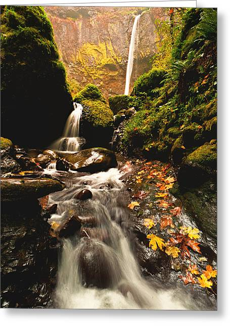 Waterfall Greeting Cards - Elowah Falls in Autumn Greeting Card by Alvin Kroon