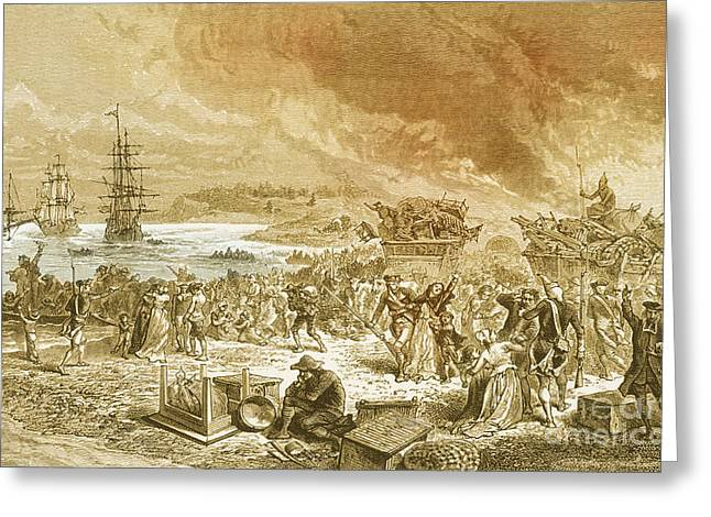 1750s Greeting Cards - Embarkation Of The Acadians, 1755 Greeting Card by Photo Researchers