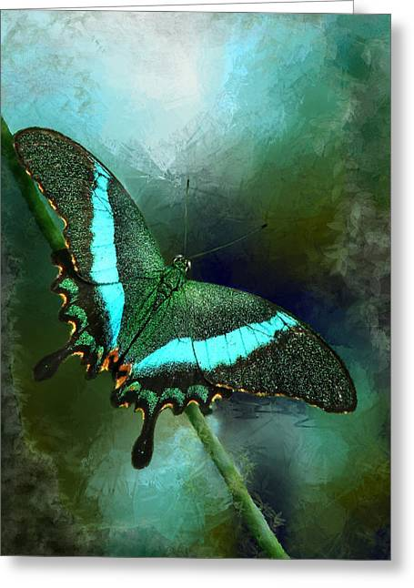 Butterfly Digital Art Greeting Cards - Emerald Peacock Swallowtail Greeting Card by Renee Dawson