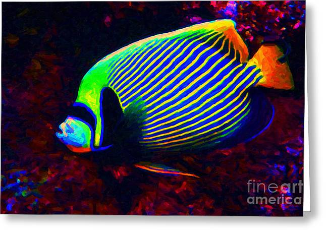 Fresh Water Fish Greeting Cards - Emperor Angelfish Greeting Card by Wingsdomain Art and Photography