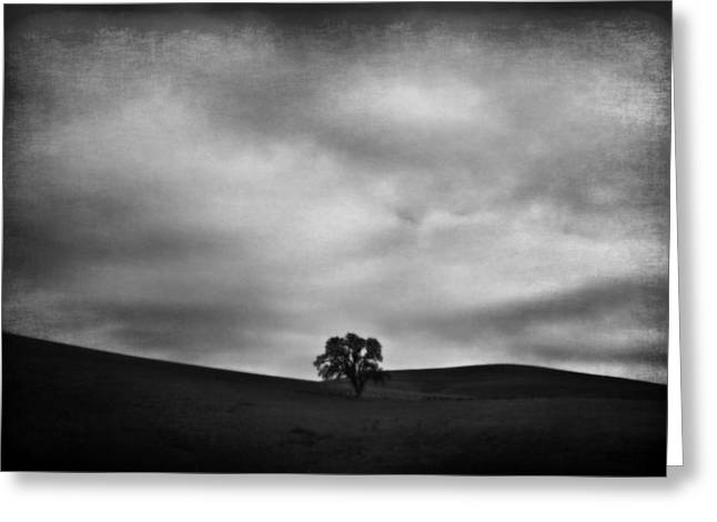 Emptiness Greeting Card by Laurie Search