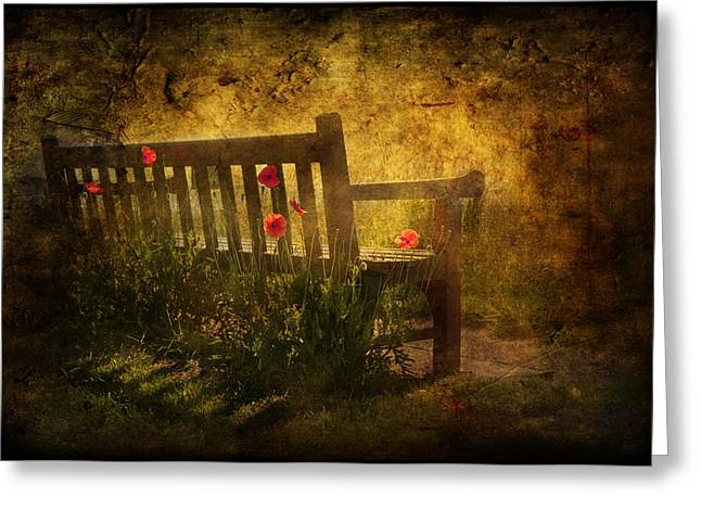 Nature Scene Mixed Media Greeting Cards - Empty Bench and Poppies Greeting Card by Svetlana Sewell