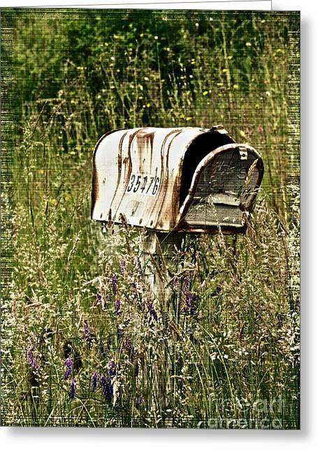 Old Country Roads Greeting Cards - Empty Mailbox at 35476 Greeting Card by Gwyn Newcombe