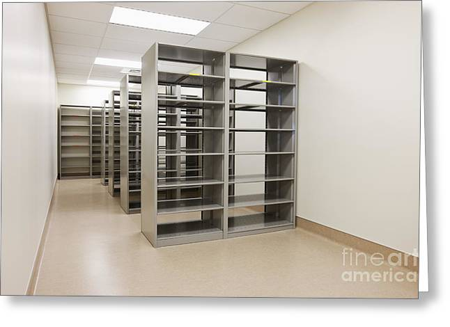 Florescent Lighting Greeting Cards - Empty Metal Shelves Greeting Card by Jetta Productions, Inc