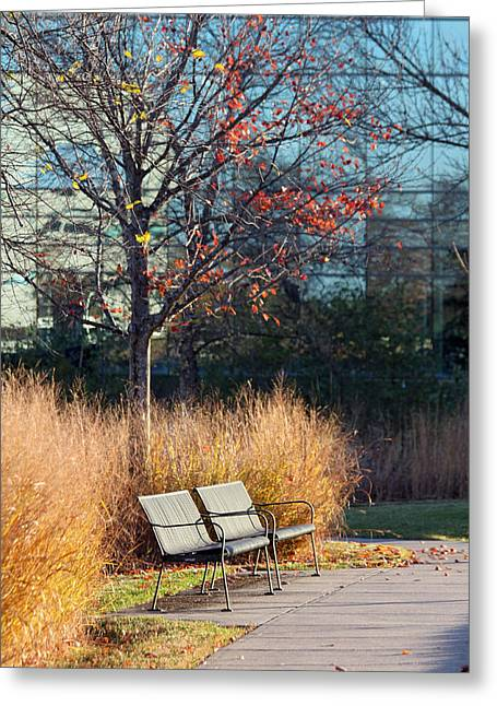 Park Benches Greeting Cards - Empty Park Greeting Card by Lauri Novak
