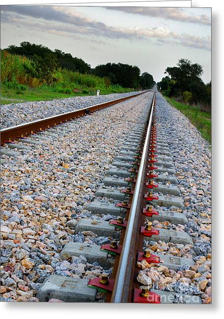 Infrastructure Greeting Cards - Empty Railway Greeting Card by Carlos Caetano