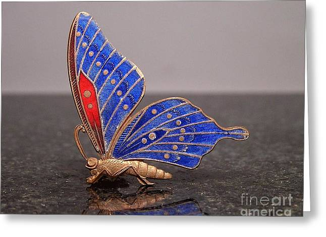 Insects Jewelry Greeting Cards - Enamels 1 Greeting Card by Dwight Goss