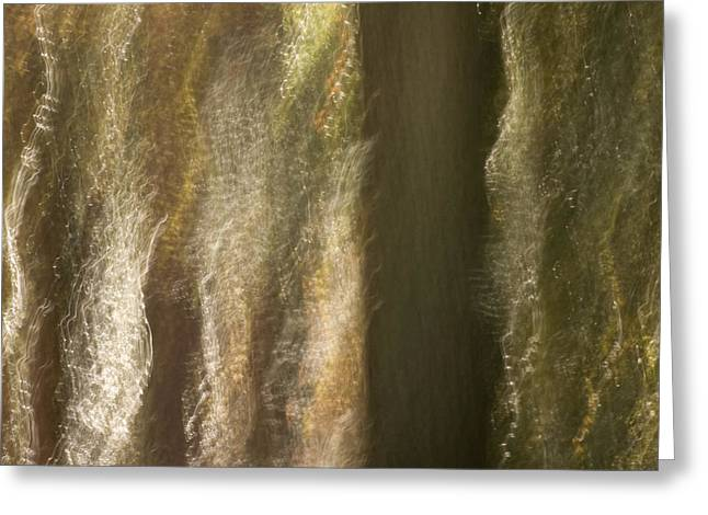 Gaia Greeting Cards - Enchanted Woods Greeting Card by Margaret Denny