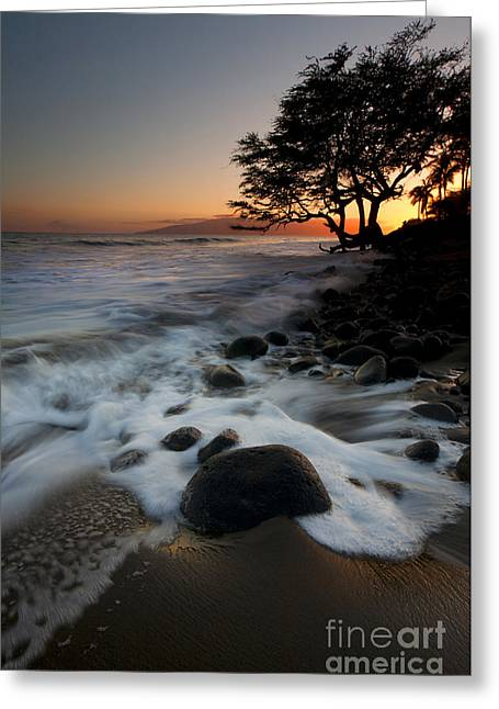 Lahaina Photographs Greeting Cards - Encompassed Greeting Card by Mike  Dawson