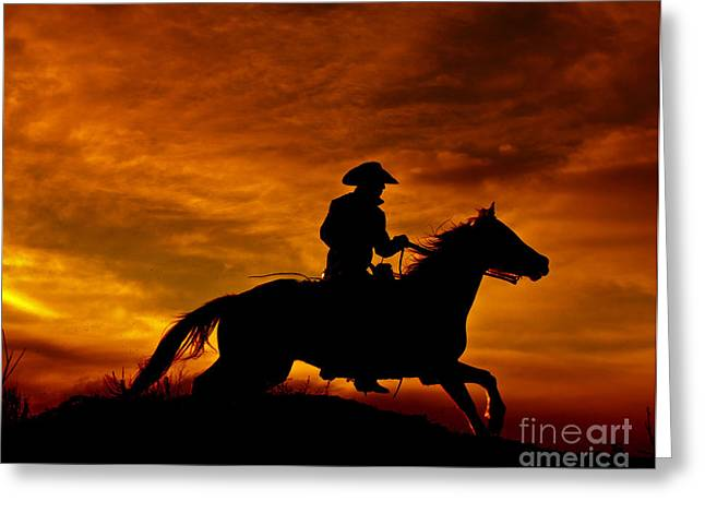 Silhouettes Of Horses Greeting Cards - End of Day Ride Greeting Card by Heather Swan