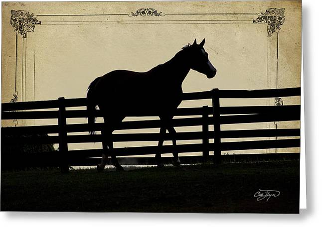 Cris Hayes Greeting Cards - End of the Day in Georgia - Horse Lovers Must See - Artist Cris Hayes Greeting Card by Cris Hayes