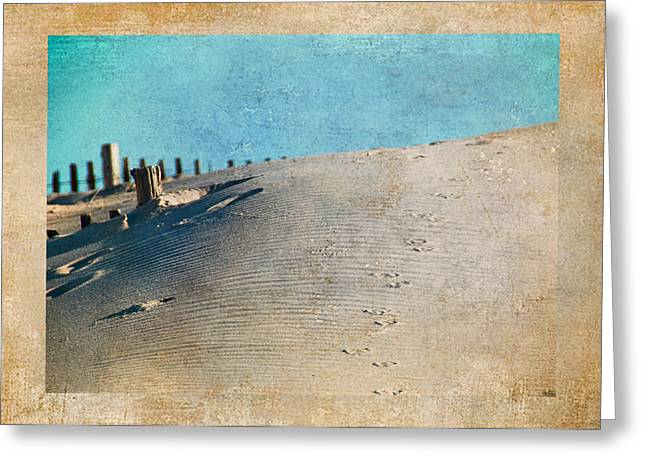 Sand Fences Greeting Cards - Endless Footprints Greeting Card by Trish Tritz