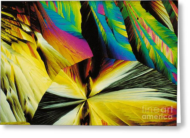 Peptide Greeting Cards - Endorphins Greeting Card by Michael W. Davidson