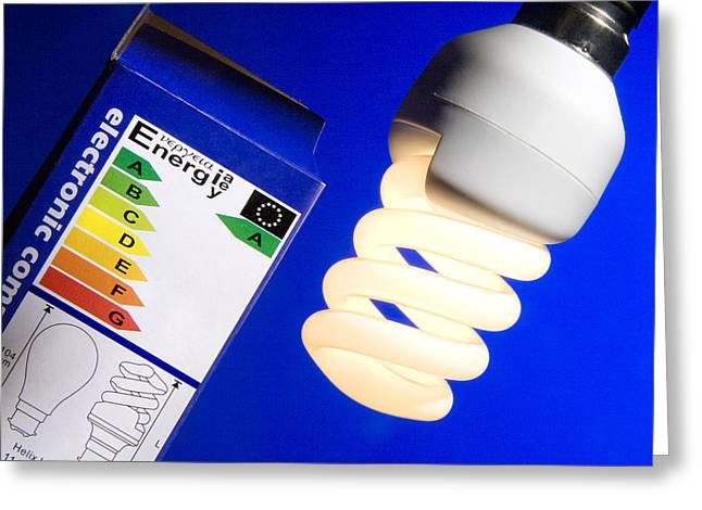 Electrical Device Greeting Cards - Energy-saving Light Bulb Greeting Card by Sheila Terry
