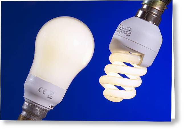 Electrical Device Greeting Cards - Energy-saving Light Bulbs Greeting Card by Sheila Terry
