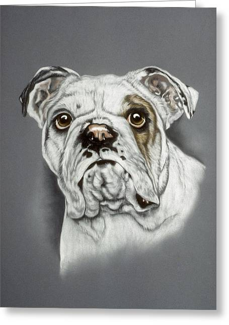 Pair Pastels Greeting Cards - English Bulldog Greeting Card by Patricia Ivy