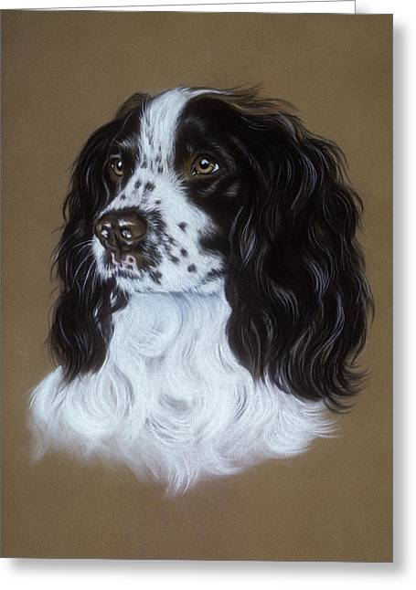 Spaniel Pastels Greeting Cards - English Cocker Spaniel Greeting Card by Patricia Ivy