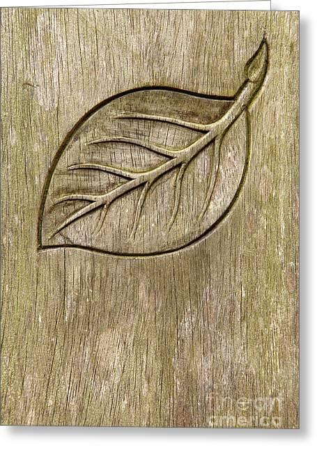 Wooden Sculpture Greeting Cards - Engraved leaf Greeting Card by Gaspar Avila