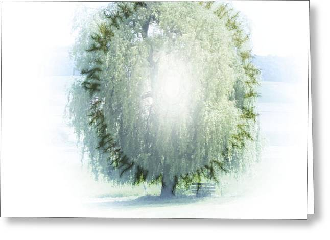 enlightment of the willow Greeting Card by Nafets Nuarb