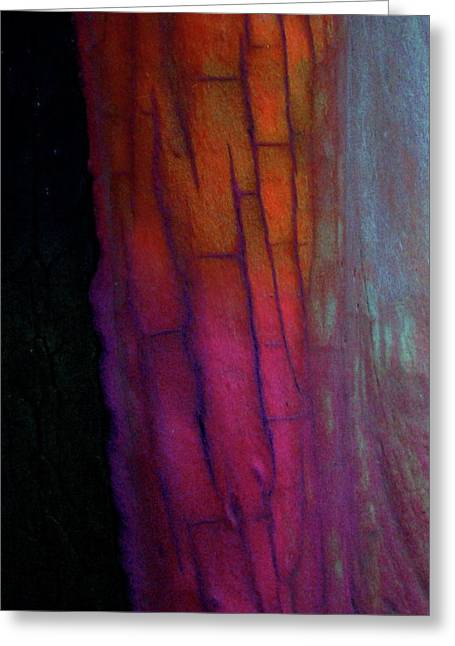 Greeting Card featuring the digital art Enter by Richard Laeton