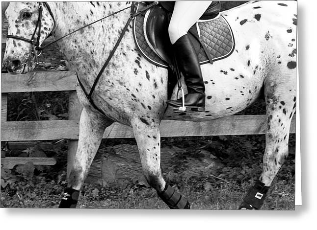 Black Boots Digital Greeting Cards - Enter Working Trot Greeting Card by Betsy C  Knapp