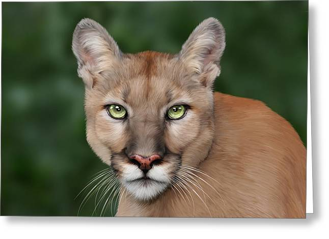 Big Cat Rescue Greeting Cards - Enya Greeting Card by Big Cat Rescue