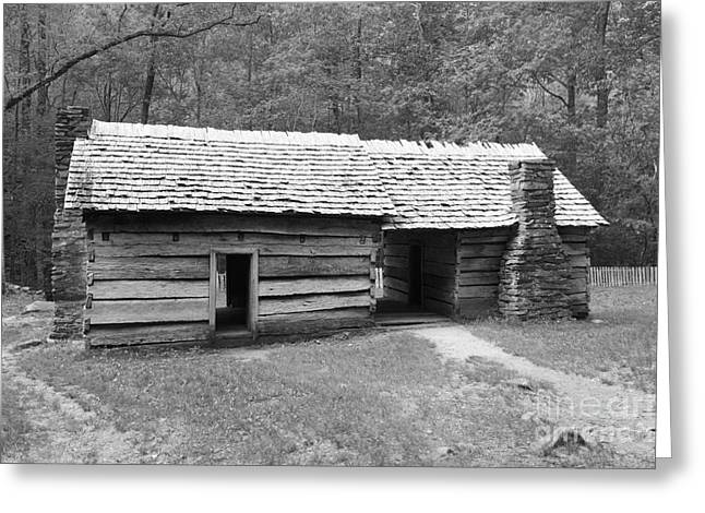 Dog Trots Photographs Greeting Cards - Ephraim Bales Cabin II Greeting Card by Gary L Suddath