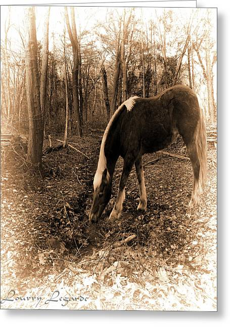 Brown Horse Photographs Greeting Cards - Equine Solitude Greeting Card by Lourry Legarde