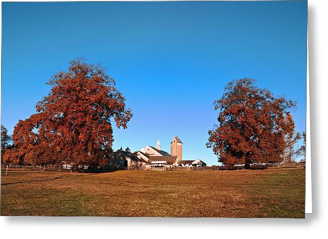 Erdenheim Farm Greeting Cards - Erdenheim Farm in Autumn Greeting Card by Bill Cannon