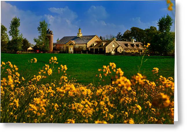 Erdenheim Farm Greeting Cards - Erdenheim Farm in Flourtown Greeting Card by Bill Cannon