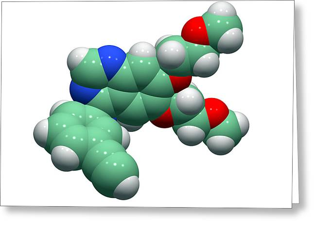 Single-celled Greeting Cards - Erlotinib Cancer Drug Molecule Greeting Card by Dr Tim Evans