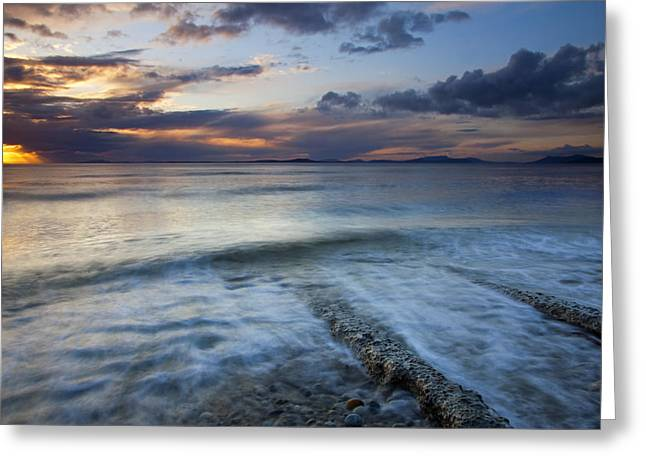 Whidbey Island Greeting Cards - Eroded by the Tides Greeting Card by Mike  Dawson