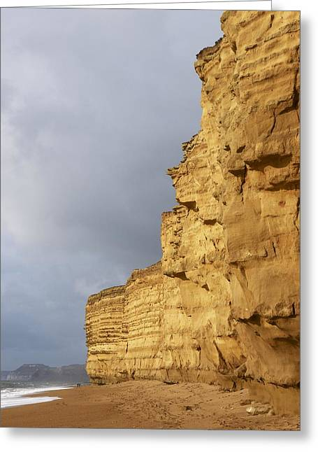 Burton Greeting Cards - Eroded Cliffs At Burton Bradstock Greeting Card by Adrian Bicker