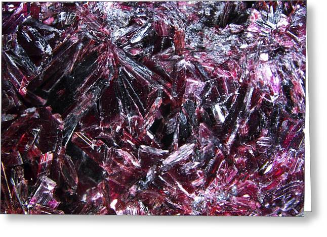 Electrical Device Greeting Cards - Erythrite Crystals, Macrophotograph Greeting Card by Pasieka
