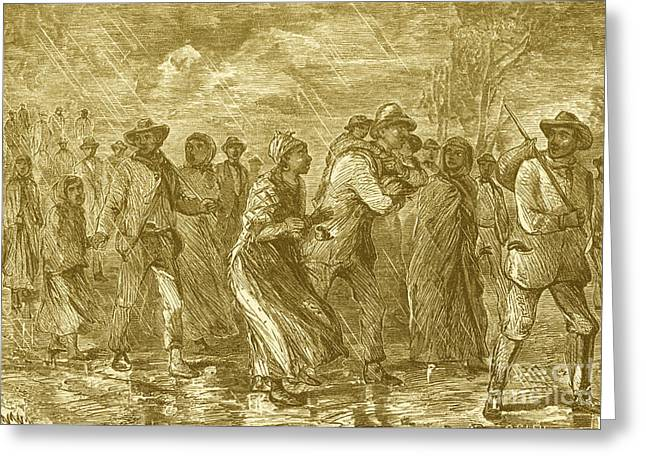 Escaping To Underground Railroad Greeting Card by Photo Researchers