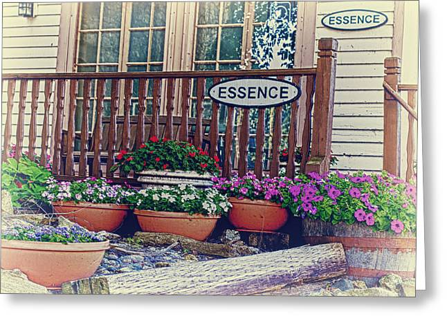 Essences Greeting Cards - ESSENCE of Lanesboro Greeting Card by Bill Tiepelman