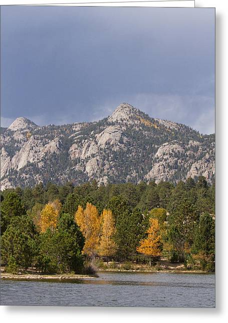 Art Galleries On Line Greeting Cards - Estes Park Autumn Lake View Vertical Greeting Card by James BO  Insogna