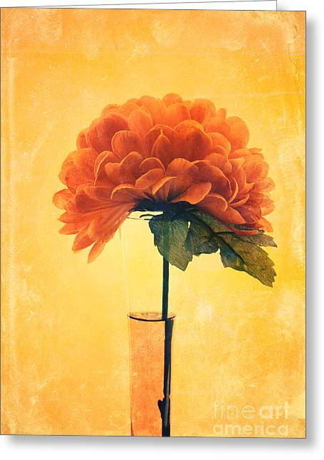 Floral Still Life Greeting Cards - Estillo - 01i2t03 Greeting Card by Variance Collections
